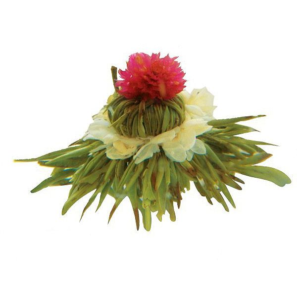 цветы жасмина чай купить